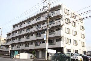 建物全体を収めるには電柱と電線がどうしても入ってしまいます。