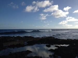 その後家族で近くの磯遊び。良い波も入って来てましたー。
