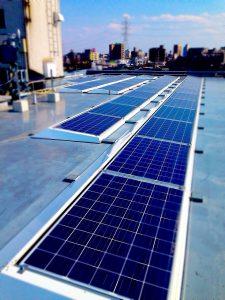 太陽光パネルくん、頑張って発電してね。