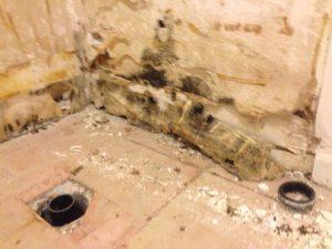 ハワイでリフォーム:すでに分かっていた水漏れ部分。長年漏れていたためカビが。。。