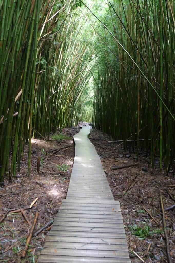 ハワイで大家:Piiwai Trail 1