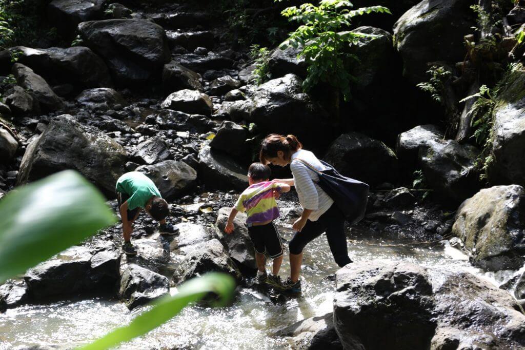 ハワイで大家:Piiwai Trail 5
