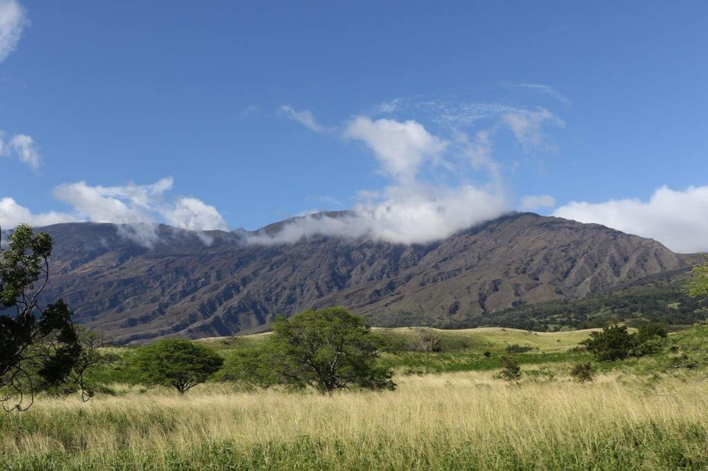 ハワイで大家:東端ドライブ1