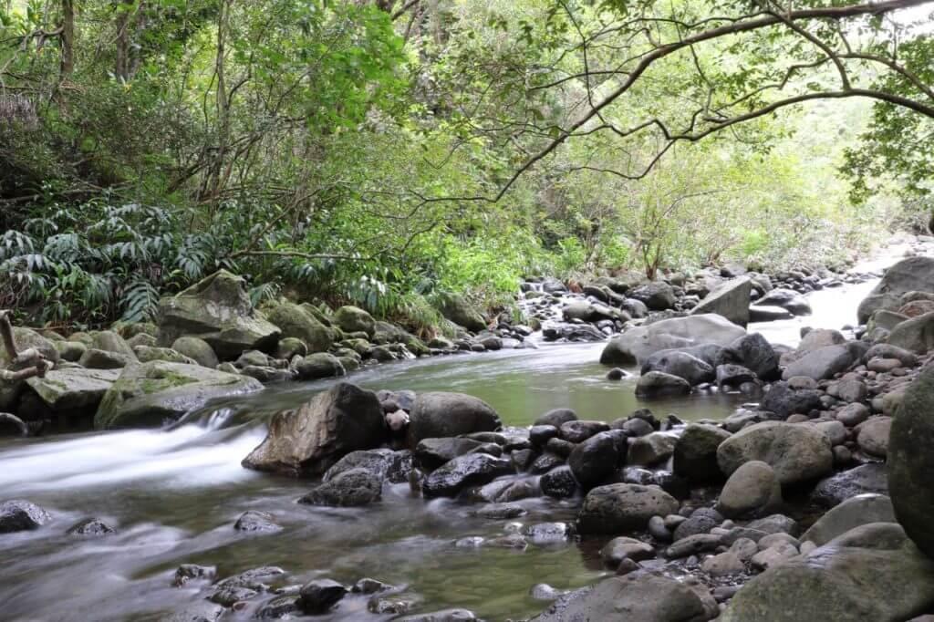 ハワイで大家:マウイ島の旅 ハイキング3